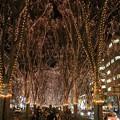 写真: 仙台の冬の風物詩
