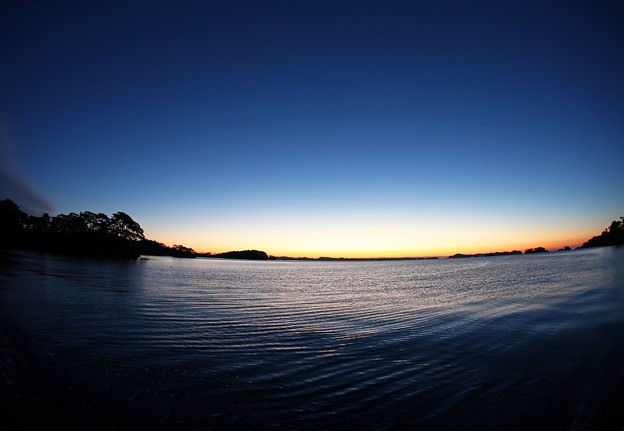 写真: 黎明の松島湾