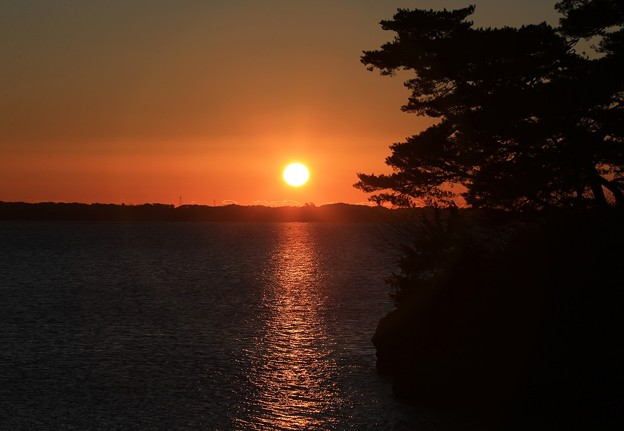 写真: 松島の日の出