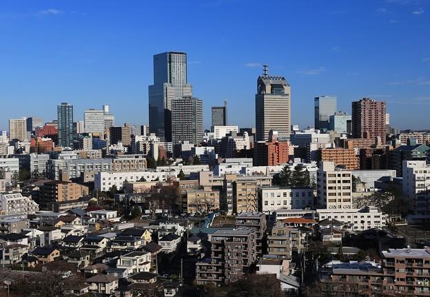 写真: 我が町仙台