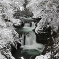 雪中の妙趣な滝