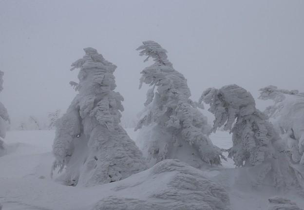 極寒の造形