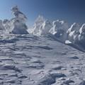 写真: 樹氷景観