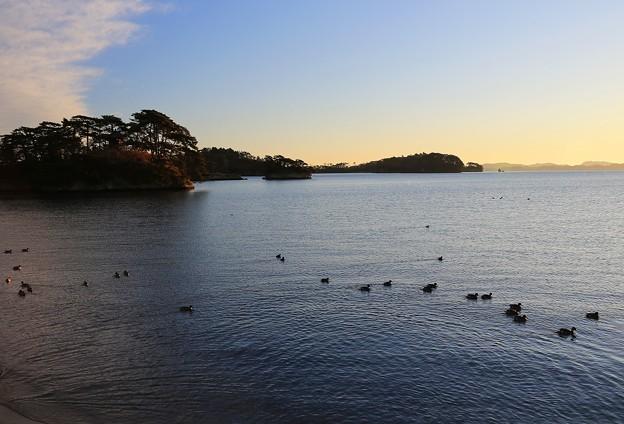 写真: 朝の松島情景
