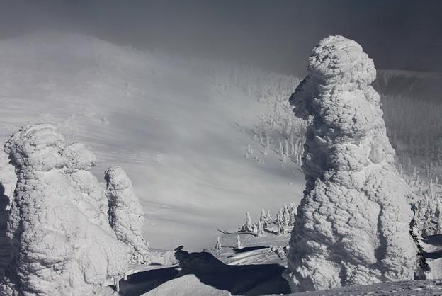 写真: 樹氷の夢景観