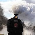湿原走る絶景列車