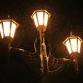 写真: 雪降る北の灯り