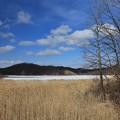 写真: 湿原の湖沼