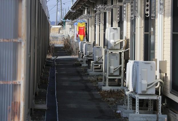 写真: 仮設住宅7年の苦悩