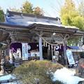 写真: 神社の春