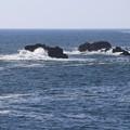大海原の光景