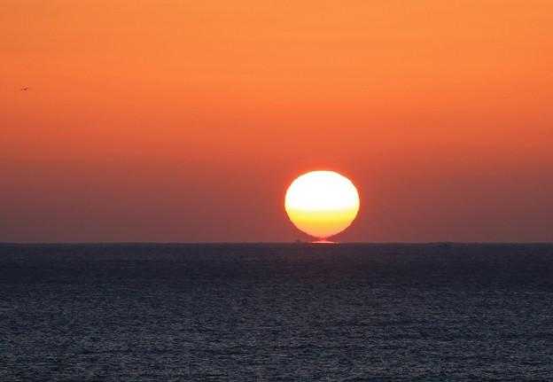 写真: 三陸の海に陽が昇る