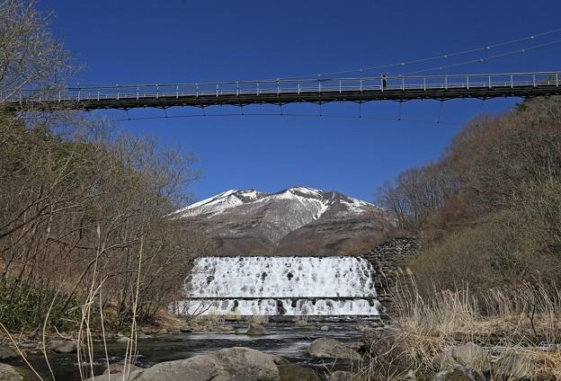 写真: やまびこ吊り橋