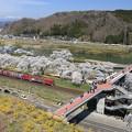 写真: 千桜橋の魅力
