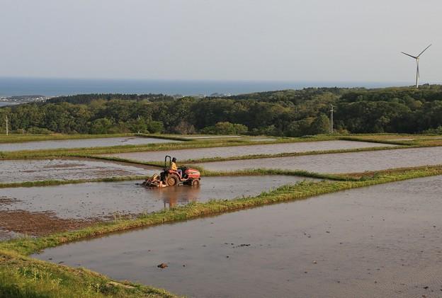 Photos: 陽が昇れば農作業