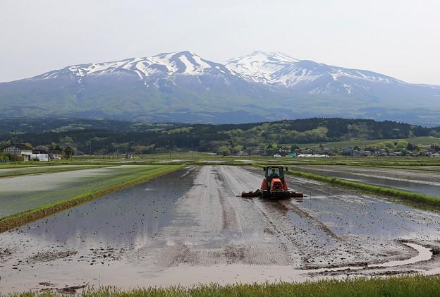 写真: 里は農繁期