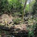 写真: 滝への荒道