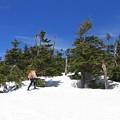 写真: 残雪踏んで八幡平