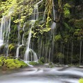 写真: 幽玄な伏流の滝