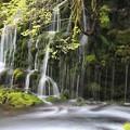 幽玄な伏流の滝