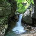 写真: 新緑の遠藤ヶ滝