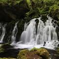 写真: 湧き出る神秘の元滝