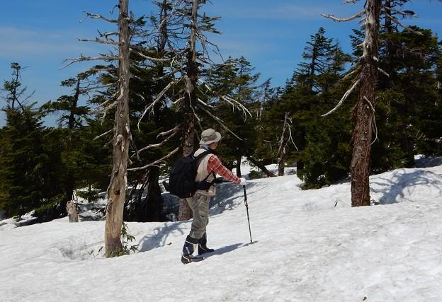 Photos: 残雪踏んで