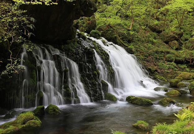 神秘的な伏流水