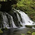 写真: 神秘的な伏流水