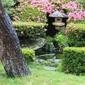 雨降る庭池