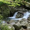 清涼な渓流