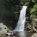 写真: 初夏の秋保大滝