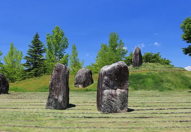 写真: 巨石の庭
