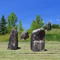Photos: 巨石の庭