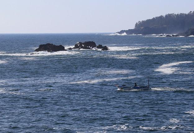 写真: 釣り舟