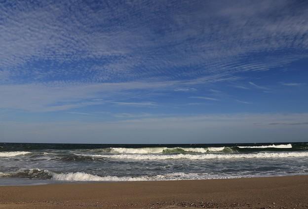 写真: 波荒し荒浜