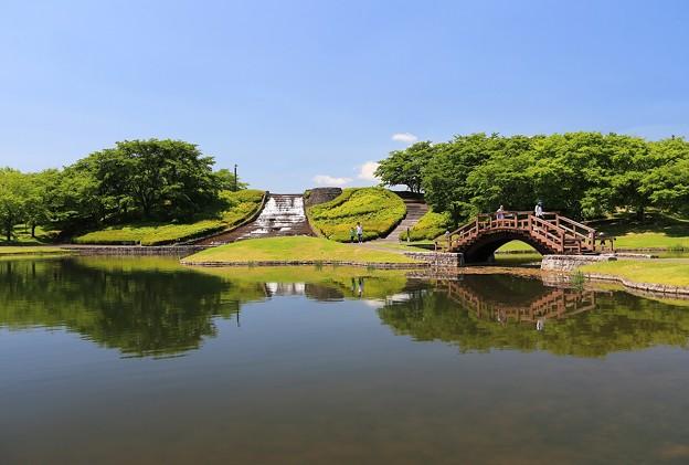 Photos: 潤いの水辺