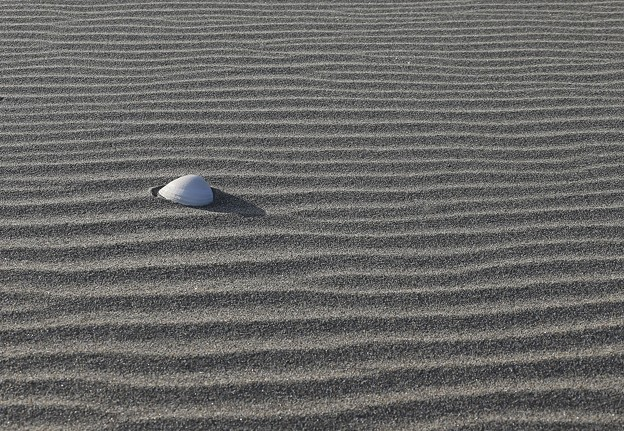 写真: 砂 紋
