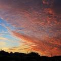 写真: 異様な朝焼け空