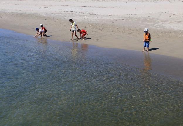 写真: 夏去りぬ砂浜