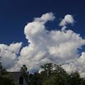秋なのに夏雲