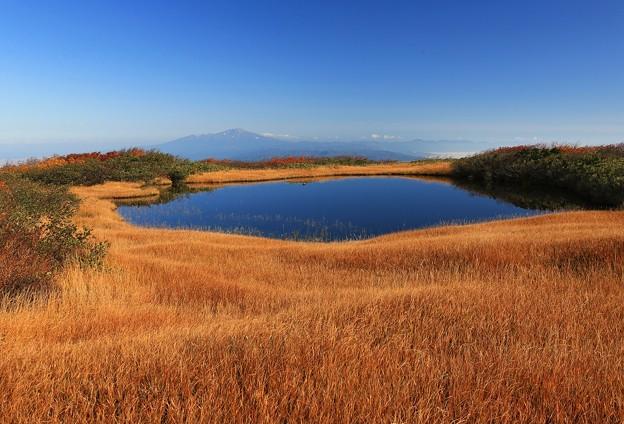 写真: 弥陀ヶ原の絶景