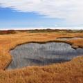 写真: 高原の池塘