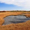Photos: 高原の池塘
