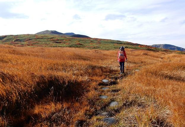 写真: 秋深まる月山の草原