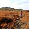 秋深まる月山の草原