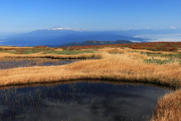 写真: 天空の弥陀ヶ原