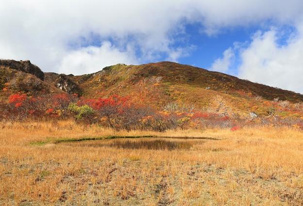 栗駒山の池塘