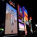 Photos: 夜の道頓堀