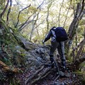 写真: 滝撮りの旅は続く